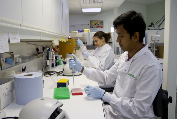 The RZSS WildGenes laboratory is fully equipped for dealing with a wide range of genetic samples